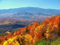 Want to visit the great Smoky Mountains in Gatlinburg, TN visit our blog Family Vacations US to read more!