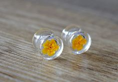 00g 10mm yellow flower plugs real floral ear by JEWELRYandPLEASURE