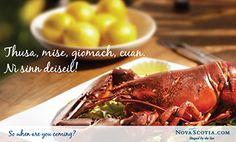 Gaelic Postcard - You, me, lobster, ocean. Let's start planning! - Nova Scotia