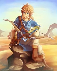Link The hero of time  Breath of the wild