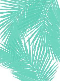 Palms Seafoam Art Print