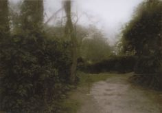 Gerhard Richter, Gartenweg (Garden Path), 72 cm x 102 cm, Oil on canvas Landscape Artwork, Cool Landscapes, Urban Landscape, Landscape Design, Garden Design, Gerhard Richter, Hydrangea Landscaping, Hydrangea Garden, Landscaping Ideas