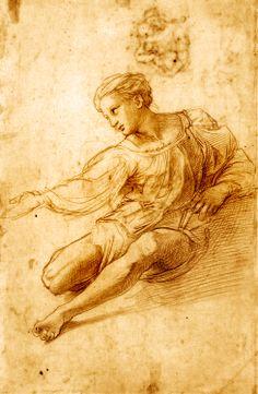Raphaël - Raffaello - Rafael - Renaissance - Study for the Madonna Alba, 1511 (chalk) Fine Art Drawing, Life Drawing, Figure Drawing, Drawing Sketches, Painting & Drawing, Art Drawings, Alphonse Mucha, Madonna, La Madone