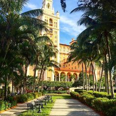 A beautiful photo of the @biltmorehotel #miami #coralgables  Tag someone you'd like to stay here with!