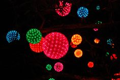 Light Balls Hanging in a Tree by Jenae smiles