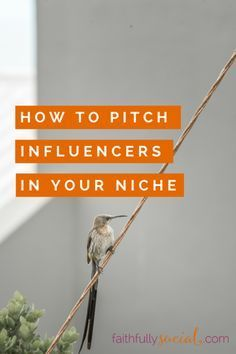 "I pitched bloggers for an expert round up post on The SITS Girls and received a ""yes"" from a total of 10 women - and some of them are heavy hitters in the social media and blogging tips space. How did I do it? I share all of my tips, processes and tricks for pitching influencers by Cristina."
