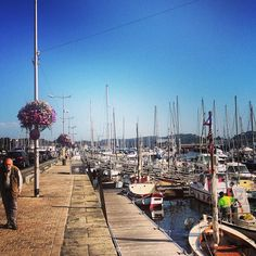 Port de Paimpol à Paimpol, Bretagne