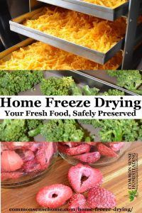 Home freeze drying - All the information (including the messy bits) you need to decide if a home freeze fryer is right for your food preservation needs.