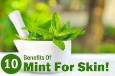 Mint is a simple great ingredient that treats many kinds of skin ailments. Here are the 10 top benefits of mint leaves for skin discussed in the article.