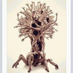 Foto. Vinte e dois bailarinos, homens com sunga e mulheres com duas peças, todos descalços, formam uma árvore de tronco grosso com raízes aéreas compostas pelas pernas flexionadas em ponte de três que estão sentados; os outros, em pé e bem unidos, equilibrando-se uns aos outros; formam o tronco, os braços abertos e as mãos espalmadas desenham a copa arredondada da árvore; um bailarino sustenta