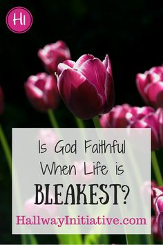 Is God still faithful even in the most difficult circumstances?  Can we trust that He'll provide even when we can't see how He will?  Guest poster Julie Fuller of Tokyo Blossom Boutique shares her story.  Click through to read - I promise you'll be encouraged to trust in God's faithfulness no matter what your circumstances are!