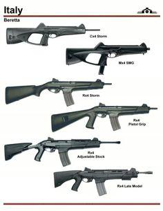 The Beretta and Storm Series Weapons Guns, Guns And Ammo, Rifles, Battle Rifle, Shooting Guns, Assault Rifle, Cool Guns, Military Weapons, Arsenal