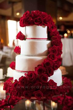 White and Red rose cake