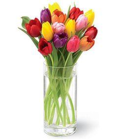 Luscious Mixed Tulips