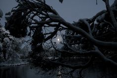 C h r i s t m a s - Kuvat Celestial, Photography, Life, Outdoor, Art, Outdoors, Art Background, Photograph, Fotografie