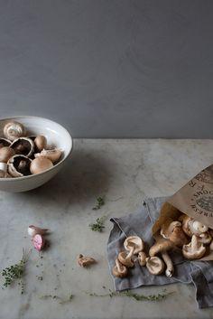 Autumnal mushroom bo