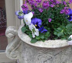 My spring planter