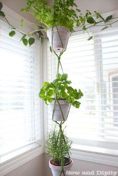 Easy DIY Macrame Hanger - Hanging Herbs, Diy Hanging, Hanging Planters, Succulent Planters, Succulents Garden, Hanging Gardens, Succulent Wall, Bathroom Plants, Herbs Indoors