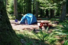 Although tens of thousands of people in the US go camping every year, they only form a minority of those that go on holiday. Why this is the case is a mystery, as many families are struggling to control their finances, and yet going on a camping holiday...