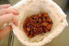 soap nuts?