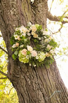 Falls Flowers Audubon Center Wedding