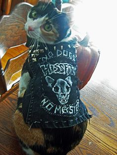 heavy metal cat denim jackets - Google Search