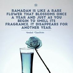 Ramadan is like a rare Flower that blossom once a year and just as you begin to Smell its Fragrance . Its disappears for another year. Fasting Ramadan, Muslim Ramadan, Islam Muslim, Islamic Qoutes, Islamic Inspirational Quotes, Who Created You, Fast Quotes, Beautiful Birthday Cards, All About Islam