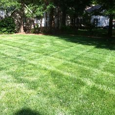 Learn how to #mow #diamondlawnstripes at http://ift.tt/269MU5s #lawnstripes #lawncare #landscaping #lawnbusinesscourse #beginnersguidetolawncare