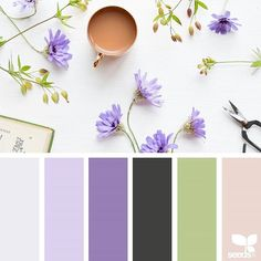 today's inspiration image for { foraged hues } is by @grainandfeather ... thank you, Rowena, for another wonderful #SeedsColor image share!