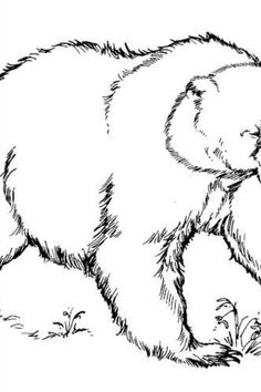 Are you looking for free Bear Coloring Pages for free? We are providing free Bear Coloring Pages for free to support parenting in this pand Math Shapesmic! #BearColoringPages #ColoringPagesBear #Bear #Coloring #Pages #Worksheets #WorksheetSchools Teddy Bear Coloring Pages, Colouring Pages, Coloring Pages For Kids, Sloth Bear, Coloring Worksheets, Parenting, Math, Free, Quote Coloring Pages