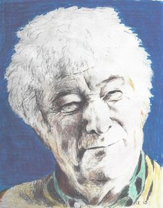 seamus heaney essay feeling into words