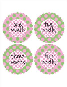 Green and Pink Monthly Stickers Baby Photo by MoonLitPrintables