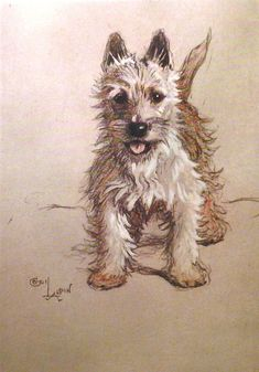 WHITE CAIRN TERRIER Dog Signed mounted 1928 Cecil by Hollysprints