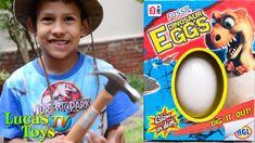Cracking Dinosaur fossil eggs / dinosaur surprise video for kids Dinosaur Fossils, Dinosaurs, Eggs, Fun, Egg, Egg As Food, Hilarious