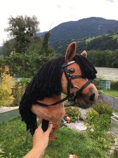 Hobby Horse, Riding Helmets, Horses, Hats, Animals, Handarbeit, Animales, Hat, Animaux