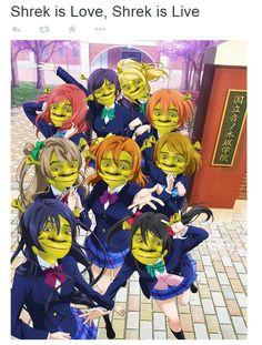 #Umi #Nico #Honoka #Kotori #Hanayo #Rin #Maki #Nozomi #Eli #Shrek #Love_Live! #Crossover  ~e.e .........