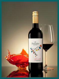 El Pensador Wine photo shoot