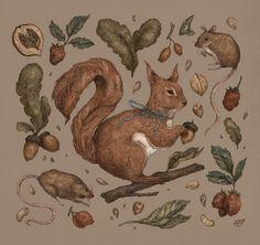 Red Squirrel Art Print by Jessica Roux - X-Small Hipster Illustration, Illustration Art, Vintage Illustrations, Squirrel Art, Framed Art Prints, Canvas Prints, Freelance Illustrator, Boho, Fine Art