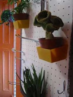 pegboard for storing outdoor plants in the winter