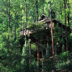 One of India's best #honeymoon locations in Coorg - The Tamara. This #treehouse (cottage) is tucked away in Coffee and spice plantation. Get #wedding planning or just book it with some special someone's! : @thetamaracoorg #treehouse #treehouses #tinyhouse by treehouseclub_