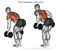 Illustration about Thrust dumbbells in the slope rear deltoid. Exercising for bodybuilding. Target muscles are marked in red. Initial and final steps. Illustration of dumbbells, lifting, steps - 58670933 Fitness Workouts, At Home Workouts, Fitness Tips, Health Fitness, Fitness Plan, Gym Fitness, Bodybuilding Training, Bodybuilding Workouts, Muscle Fitness