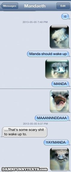 funny auto-correct texts - Rise and Ahhh!!