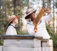 """""""Die Bienenhüterin"""" - Kino-Tipp – Mit Star-Besetzung wurde der gleichnamige Bestseller von Sue Monk Kidd verfilmt."""