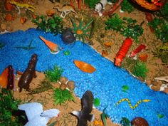 rainforest craft ideas 1000 images about school project on 2810