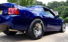 Mustang in blue.