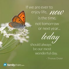 If we are ever to enjoy life, now is the time, not tomorrow or next year... Today should always be our most wonderful day. - Thomas Dreier