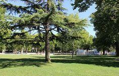 Jardim do Bonfim
