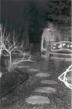 paranormal pictures | Guide to Ghosts - A Guide to Ghosts and Hauntings