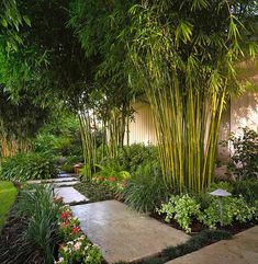 The darkest shades of green look amazing in these kinds of gardens, combined with deep reds that pop out and give it a live feeling to your tropical landscaping ideas. Tropical Landscaping, Modern Landscaping, Tropical Garden, Backyard Landscaping, Landscaping Ideas, Landscaping Borders, Modern Japanese Garden, Japanese Garden Landscape, Bamboo Landscape