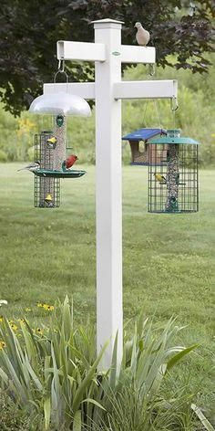 Wonderful Cost-Free big bird feeders Tips Providing chickens is actually not simply a enjoyment academic task which can be done with the family, additionally it Bird Feeder Poles, Wild Bird Feeders, Diy Bird Feeder, Quad, Funny Bird, Wild Birds Unlimited, Birds For Sale, Bird House Kits, Bird Aviary